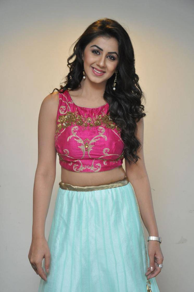 Nikki Galrani HD Wallpaper and Photos – Free Download