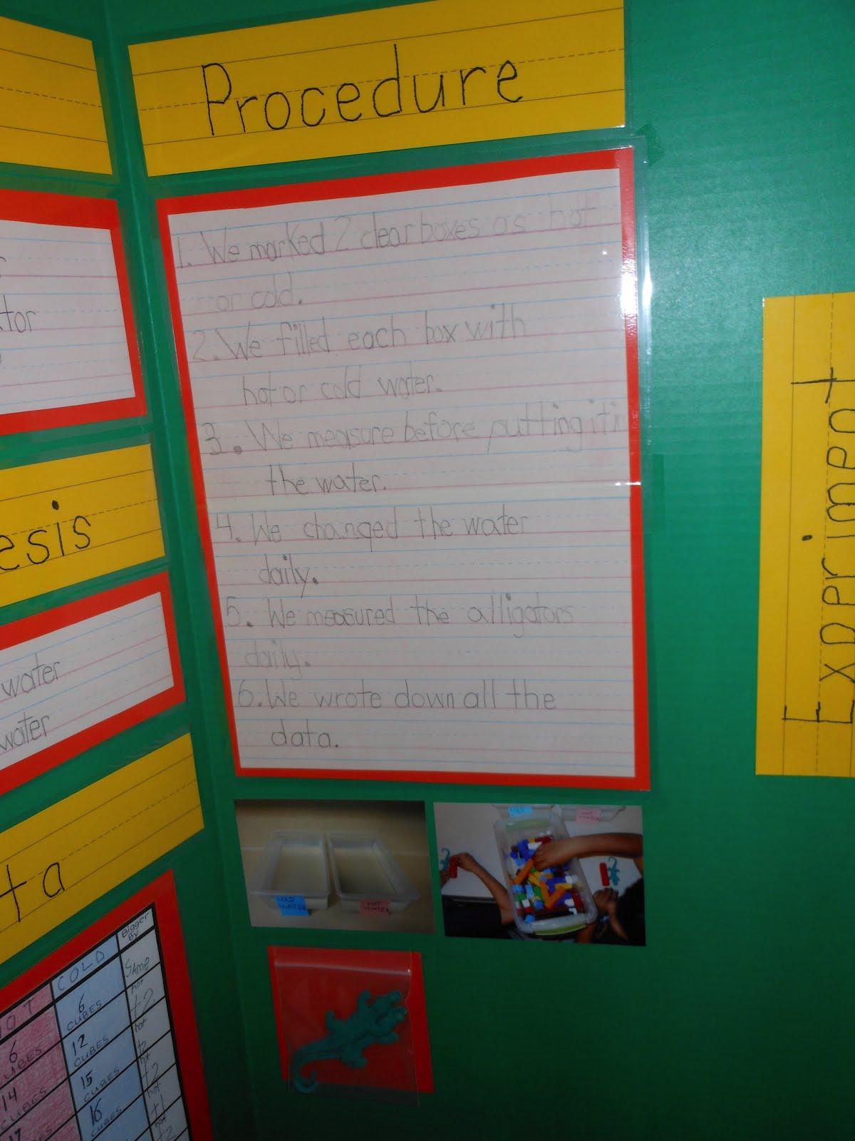 DSCN1682 1 - Kindergarten Science Fair Project