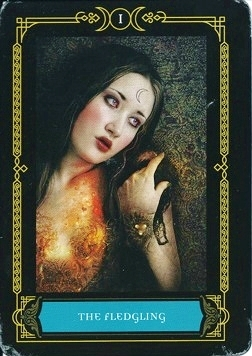 Samhain Tarot Review; the Fledgling, Wisdom of the House of Night oracle