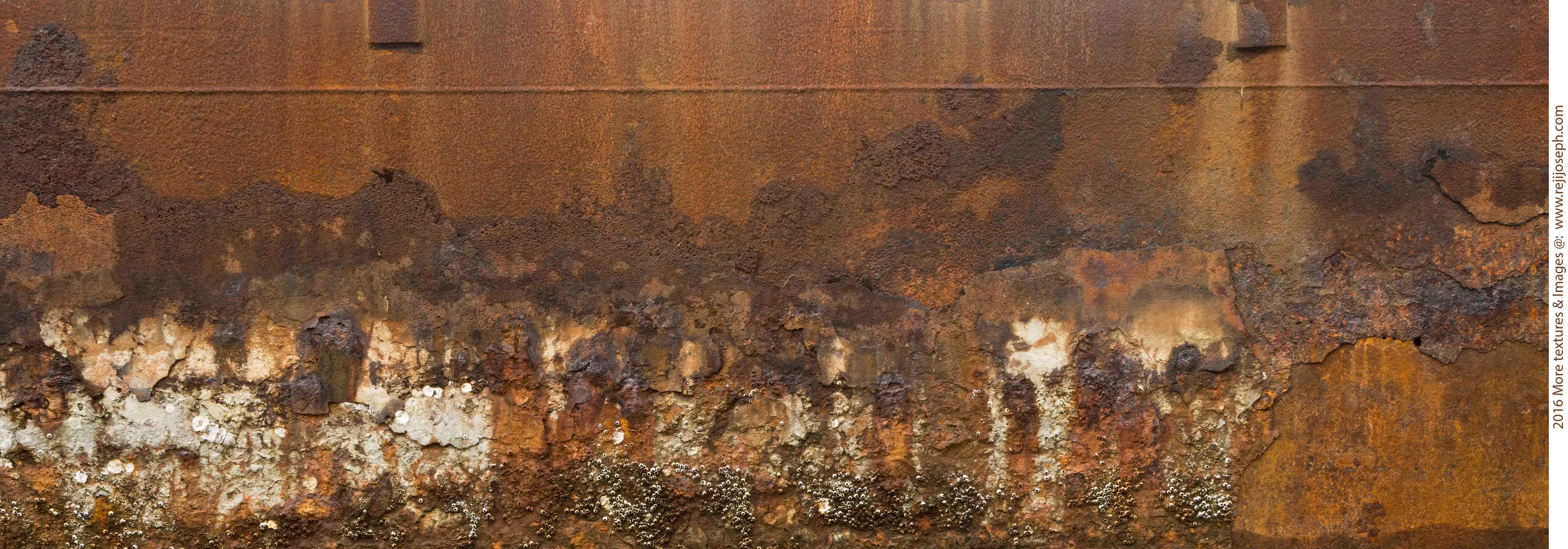 Rusty metal texture 00010