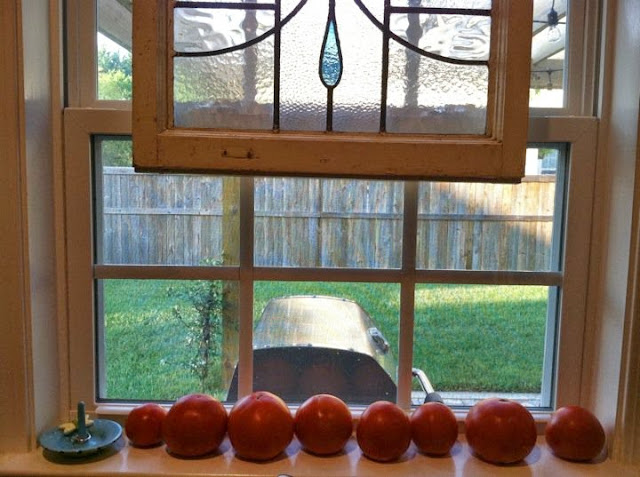 Tomato filled window seal | The Lowcountry Lady