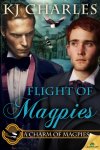 http://www.paperbackstash.com/2015/01/flight-of-magpies.html