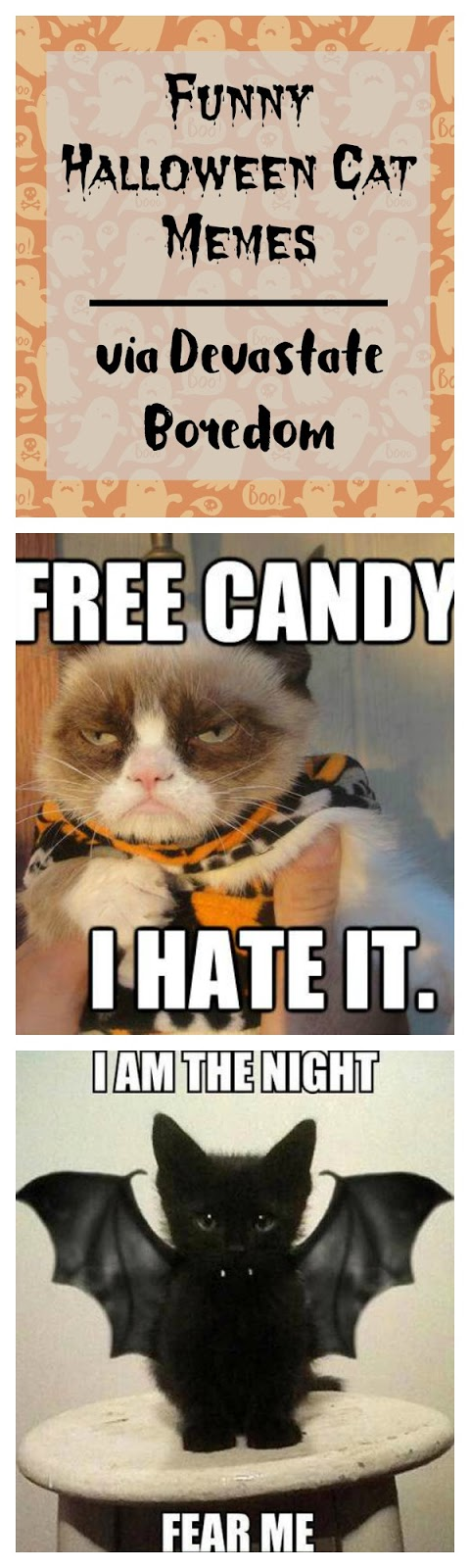 click for more halloween cat funnies funny halloween cat memes cartoons and photos - Funny Cat Halloween