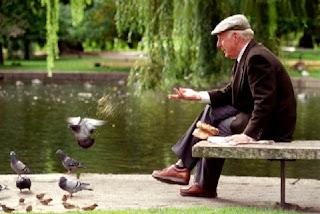 El abuelo y las palomas