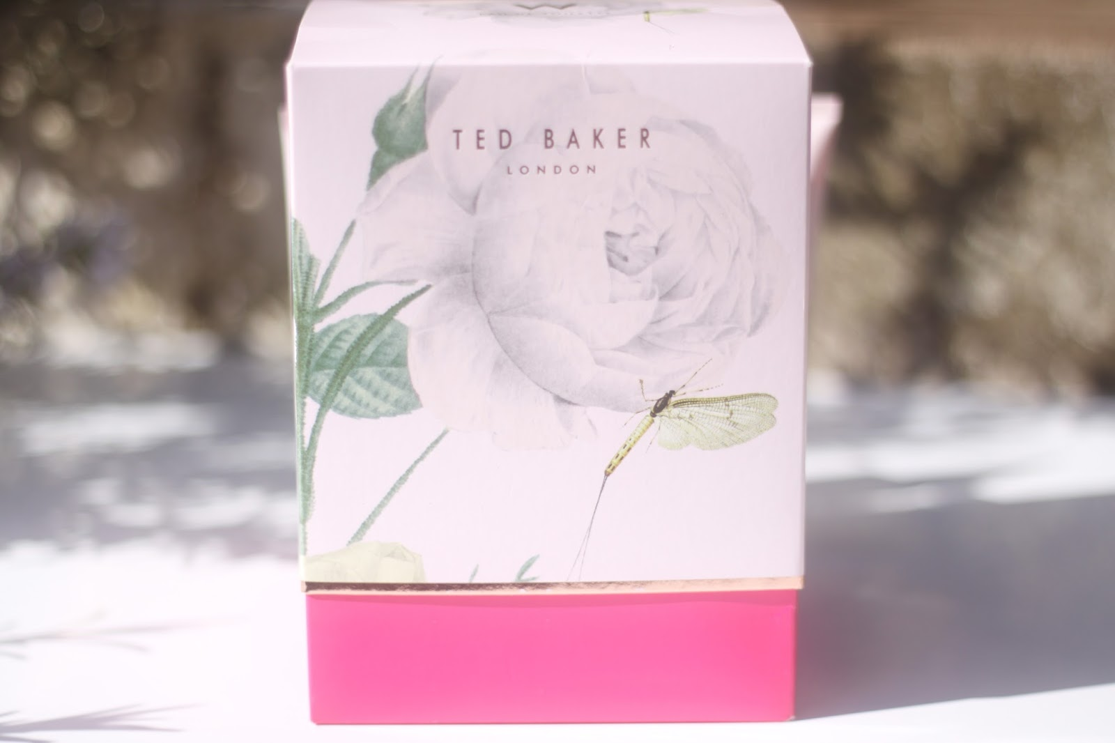 W By Ted Baker