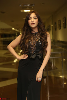 Angela Krislinzki in Transparent Black Gown at Rogue Movie Teaser Launch 1st March 2017 038.JPG