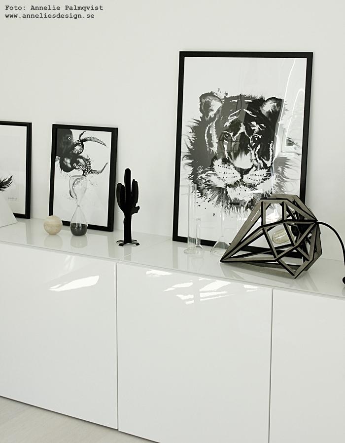 konsttryck, tavla, tavlor, poster, posters, tiger, print, prints, svartvit inredning, annelies design, webbutik, webbutiker, webshop, nettbutikk, nettbutikker, bläckfisk, bläckfiskar, skänk, kaktus prydnad, dekoration, döden lampa, lampor, liggande lampa, grå, grått, gråa, svartvitt, svartvit, inredning, ikea bestå