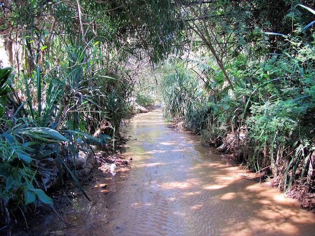 fairy stream mui ne vietnam