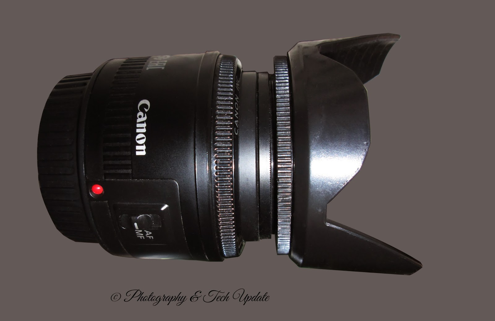 Low Budget Canon And Nikon Lenses For Photography Photography