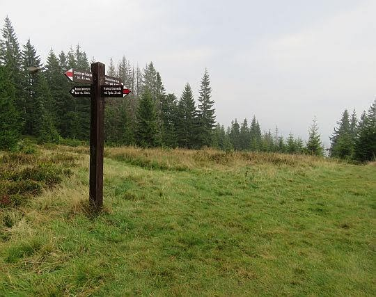 Drogowskaz pod szczytem Kiczory.
