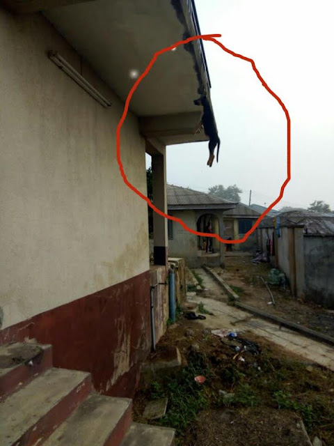 Lagos Landlord allegedly hangs Tenant's Dog on the ceiling