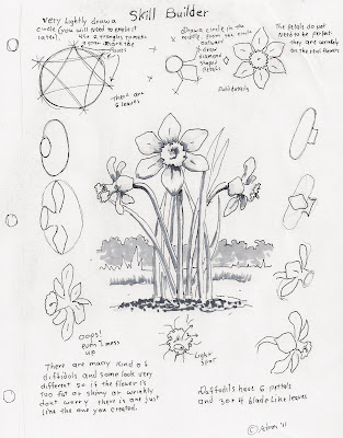 Adron's Art Lesson Plans: How to Draw a Daffodil, a Skill