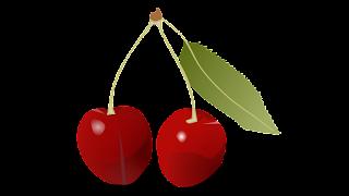 wild cherry clipart