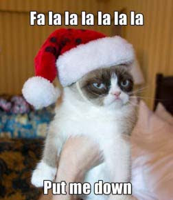 funny Christmas card memes