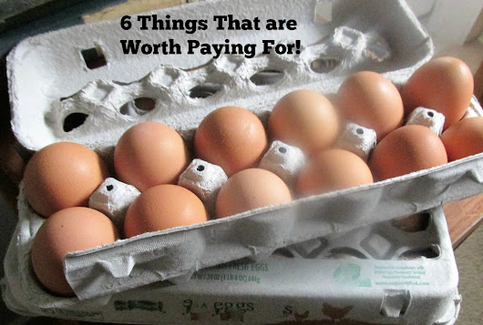 6 Things That are Worth Paying For!