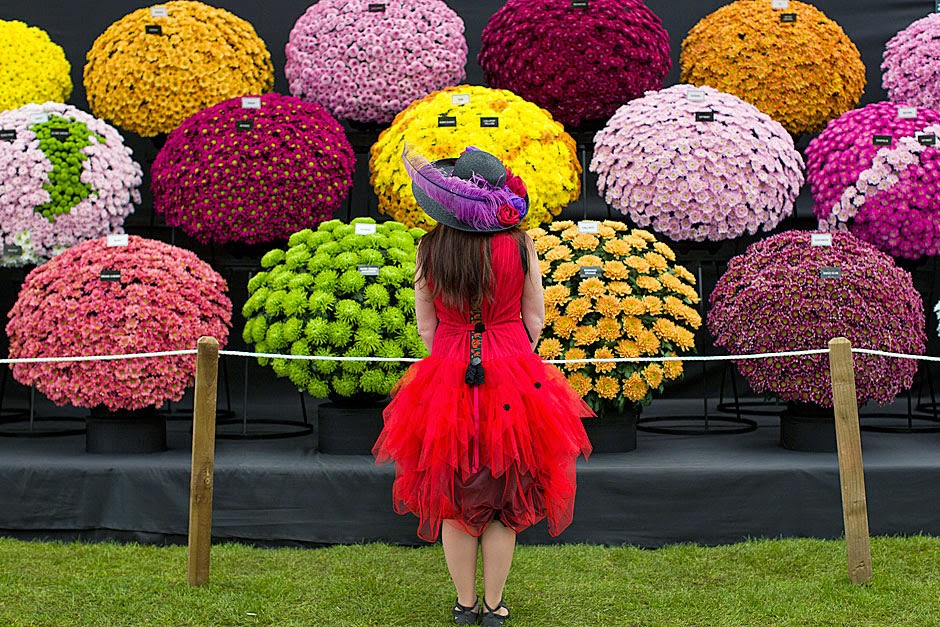 Royal Horticultural Society Chelsea Flower Show