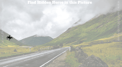 This is the answer for picture puzzle in which one has to find the hidden horse