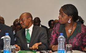 Assets Declaration: CCB Invites Adeosun, Emefiele, Fashola Others