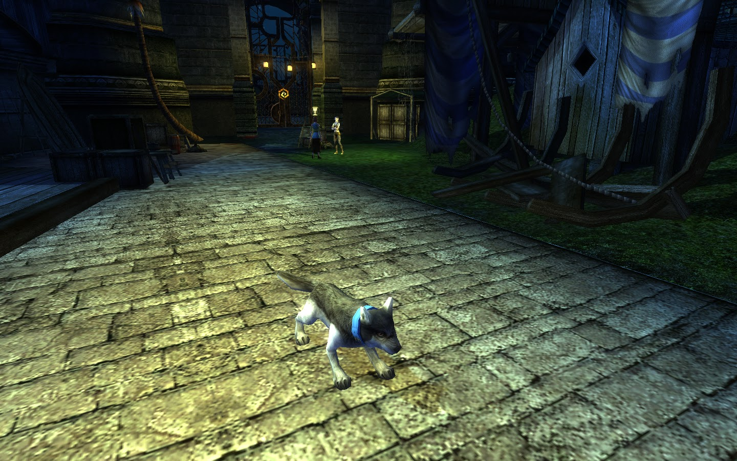 Yeebo Fernbottom's MMO Blog: DDO: My Pack (a Preview of the