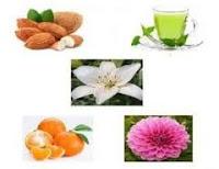 Obat Herbal Asma Akut Dan Kronis Di Apotik Terbukti Ampuh