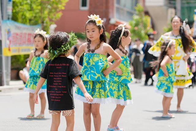 マロニエ祭り、カハレフラ&タヒチスタジオの写真 11