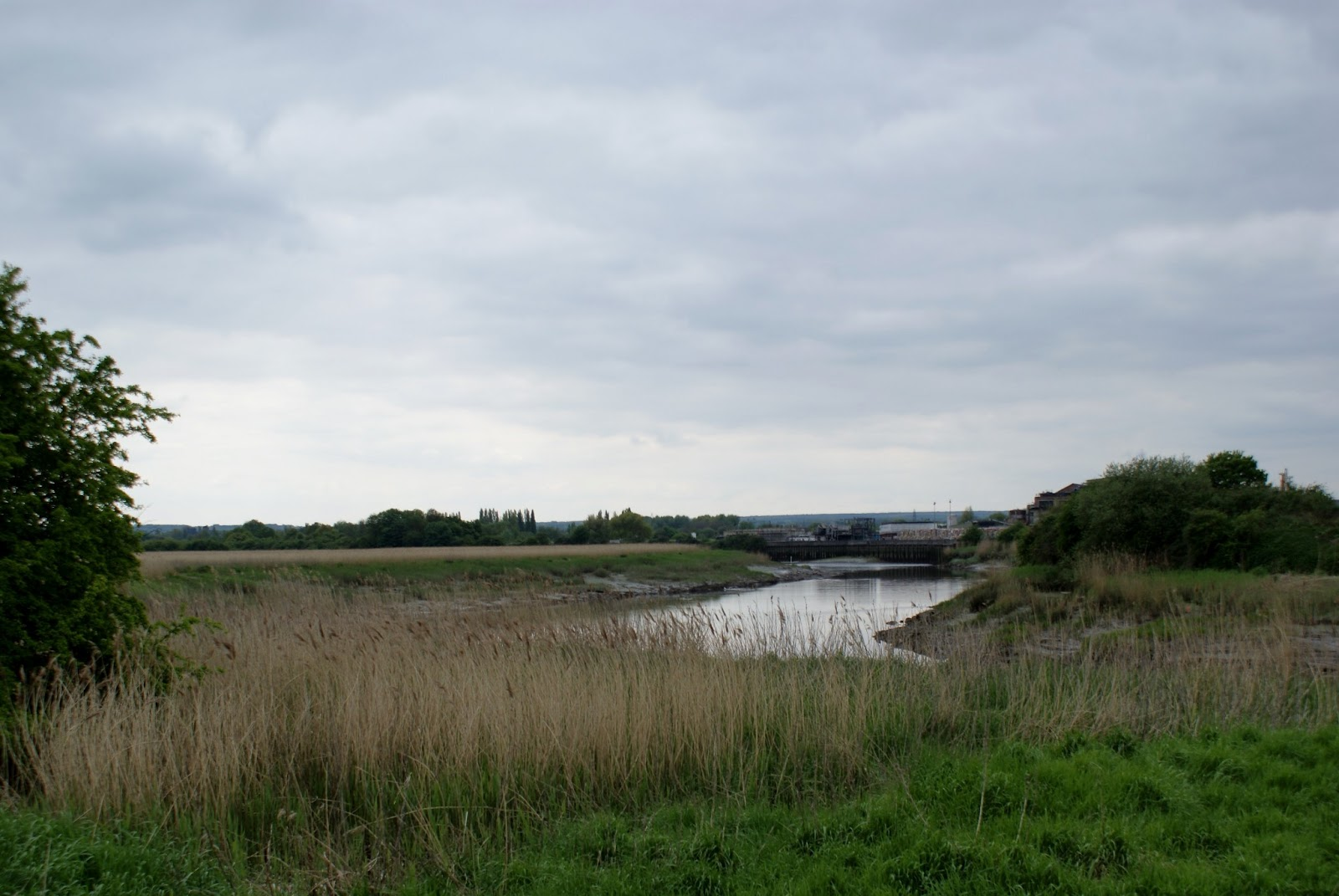 ripplestone review: The Medway Gap ~ Walking in the hidden ...