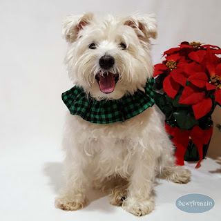 Buffalo Plaid Green Christmas Dog Scrunchie Ruffle