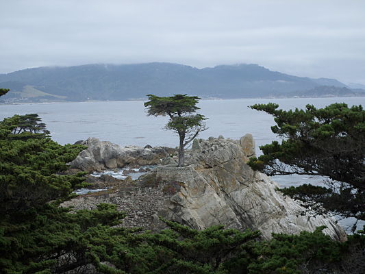 17 mile drive monterey california