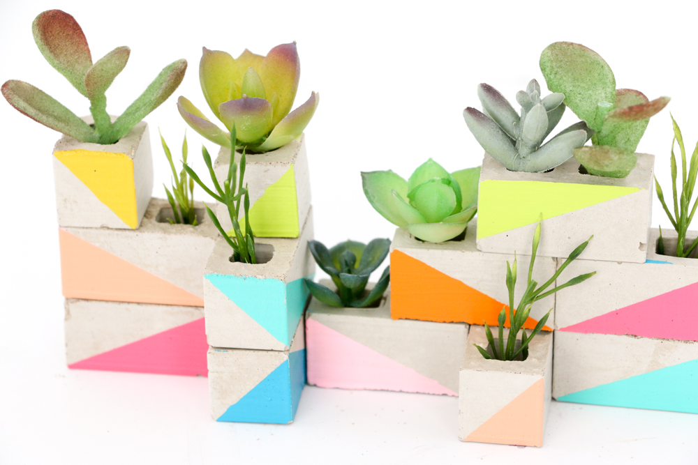 a kailo chic life: craft it - a mini succulent garden for your desk