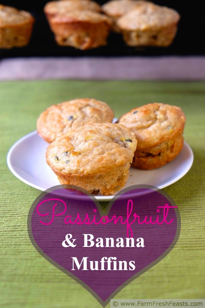 http://www.farmfreshfeasts.com/2015/02/passionfruit-banana-muffins-where-do.html