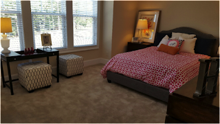 Professional Home Staging Blog