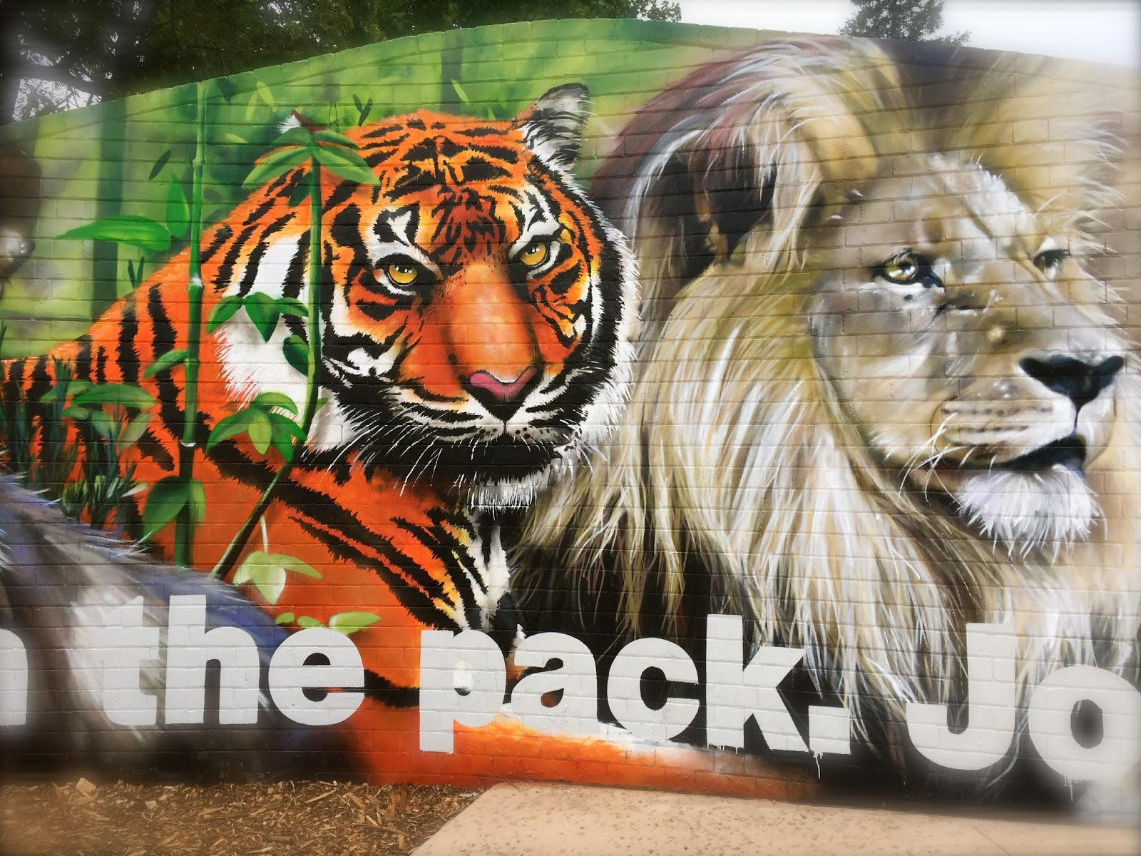 So In Love With Melbourne New Wall Murals In The Melbourne Zoo
