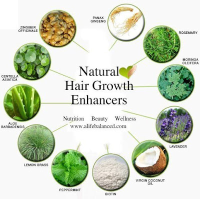 Natural Foods That Promote Hair Growth