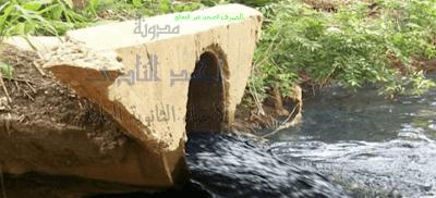 مسببات المرض والموت عند النبات - المواد السامة - الصرف الصحى غير المعالج