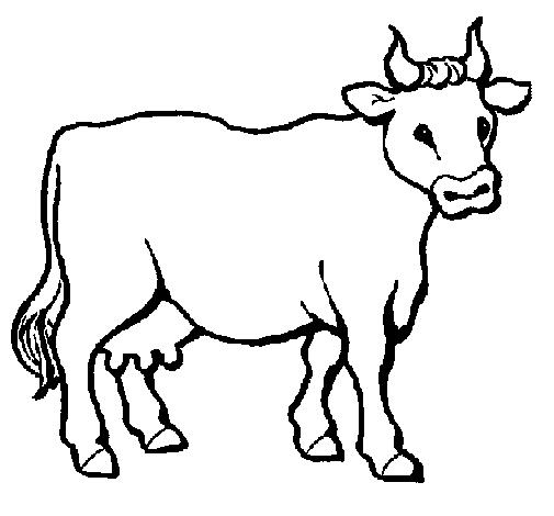 Desenho de vacas para colorir desenhos para colorir for Coloring pages of a cow