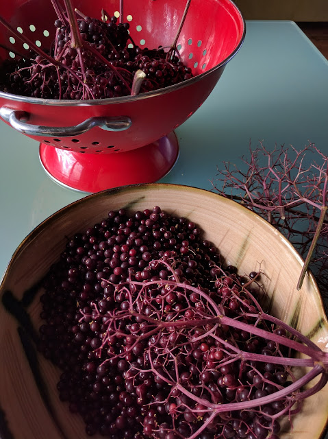 Elderberries - A Life Unprocessed