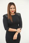 nikesha patel new glamorous photos-thumbnail-7