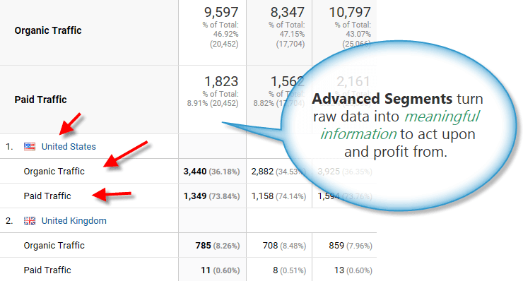 Segmented Google Analytics report