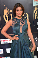 Shriya Saran in Beautiful Transparent Dark Gown IIFA Utsavam Awards 2017 034.JPG