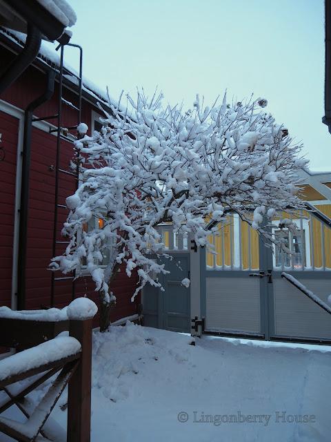 lingonberryhouse, mantle of snow, lumi, talvi, winter, home, koti