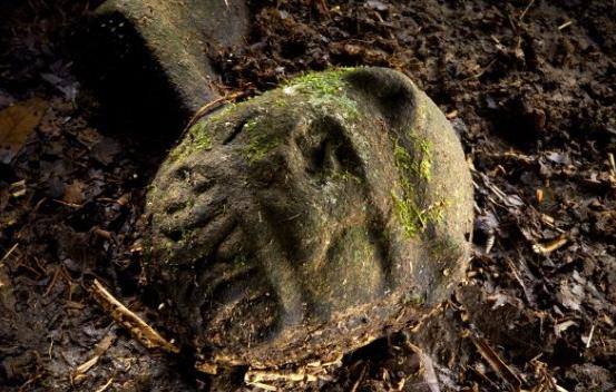 10 Misteri yang Tidak Dapat Dijelaskan Seputar Hutan di Seluruh Dunia