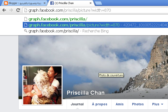How can you view any profile profile (I only) on Facebook after the new update