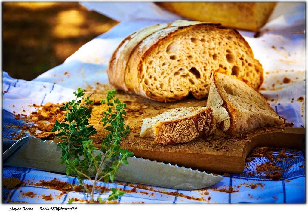 imagen de pan fresco cortado sobre una tabla de madera con un cuchillo de sierra al lado