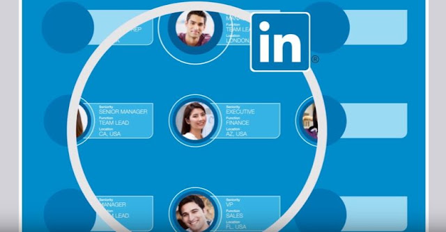 Linkedin lance Website Demographics