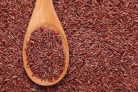 Beras merah obat herbal tradisional penyakit beri - beri