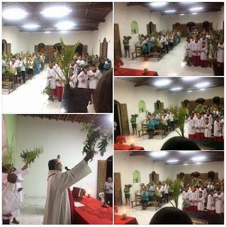 Católicos realizam procissão de Ramos