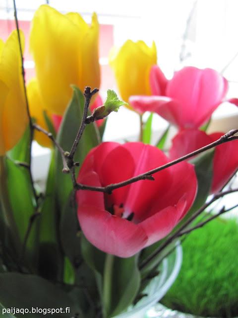 paiqo: pääsiäinen