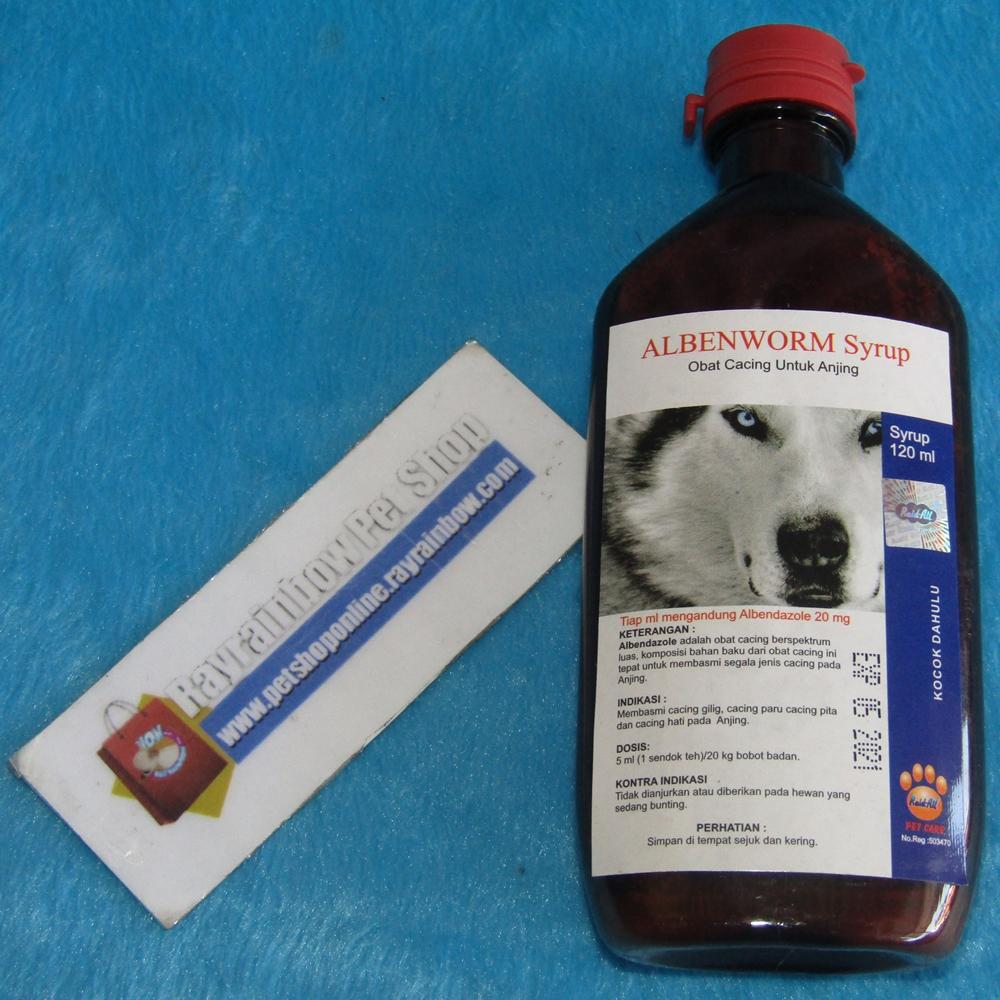 Update Obat Hewan Kucing Anjing Rayrainbow Petshop