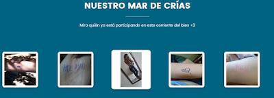 http://baleiarosa.com.br/index.php?lang=es