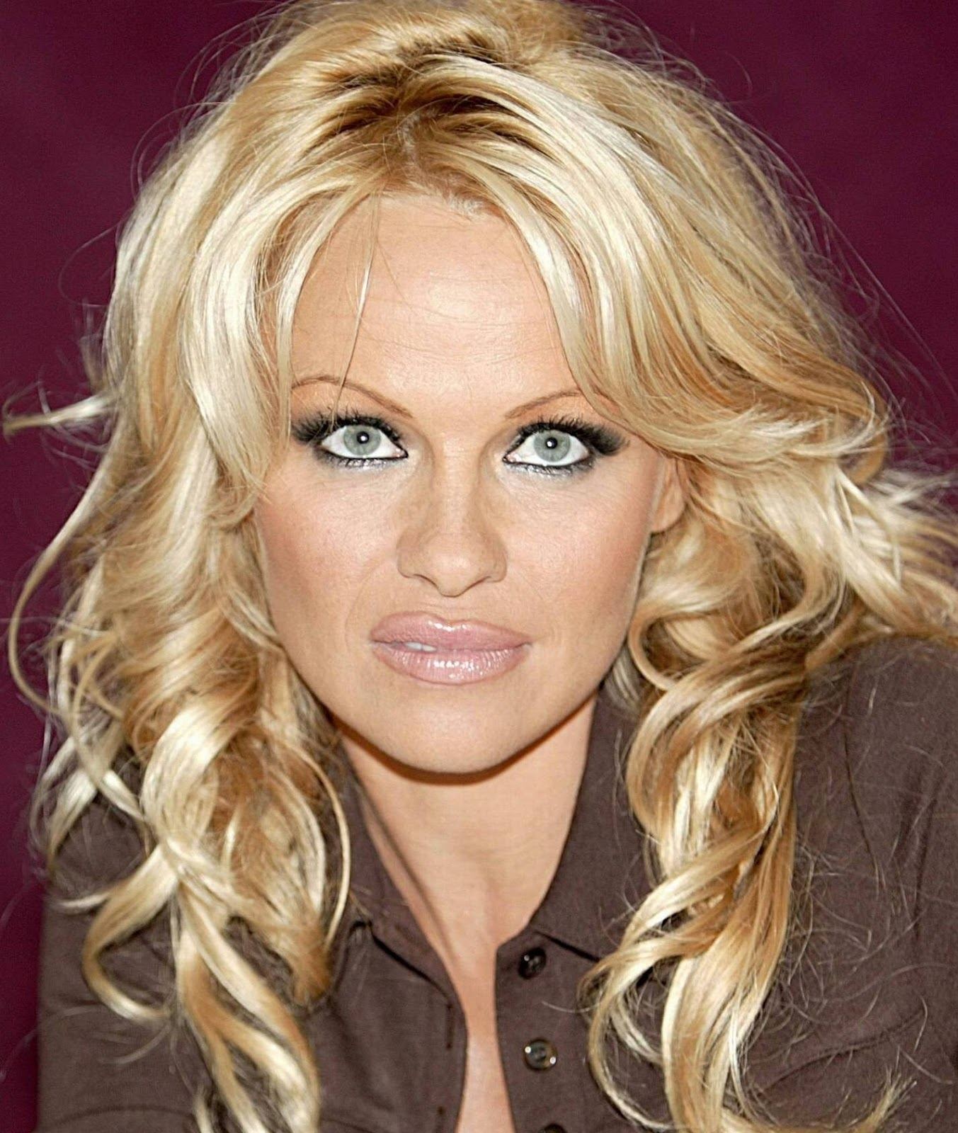 Celebrity Biography and photos: Pamela Anderson Pamela Anderson